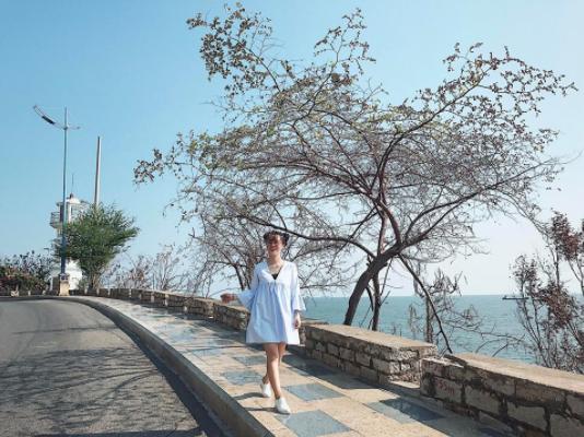 Khung cảnh đẹp và lãng mạng tại ngọn hải đăng Vũng Tàu
